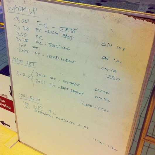 Tuesday, 24th June 2014 - Endurance Swim Session