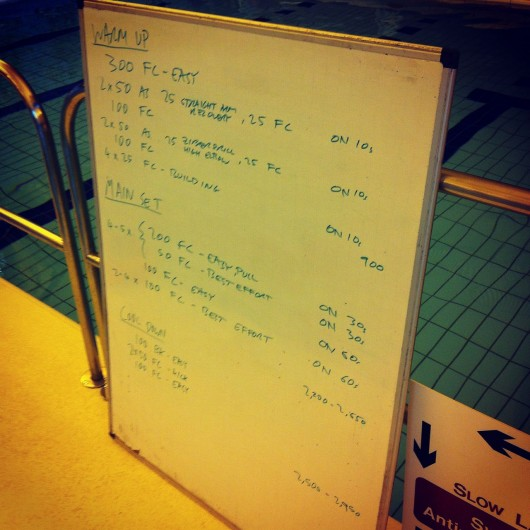 Tuesday, 8th July 2014 - Endurance Swim Session