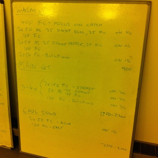 Tuesday, 11th November 2014 - Endurance Swim Session