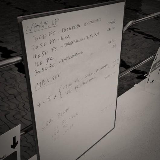 Tuesday, 18th November 2014 - Endurance Swim Session
