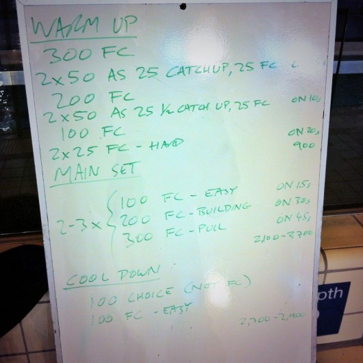 Wednesday, 19th November 2014 - Endurance Swim Session