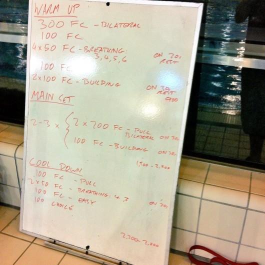 Wednesday, 10th December 2014 - Endurance Swim Session