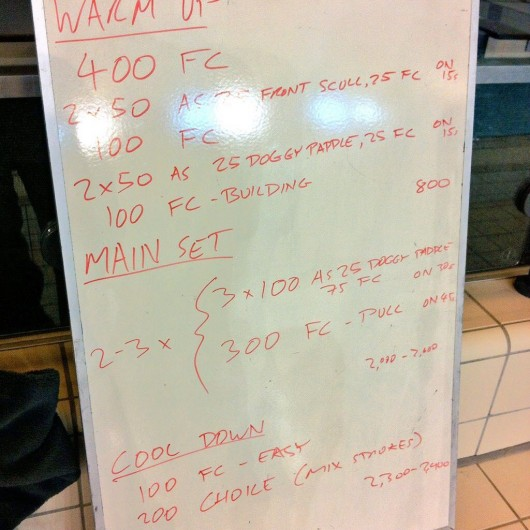 Wednesday, 17th December 2014 - Endurance Swim Session