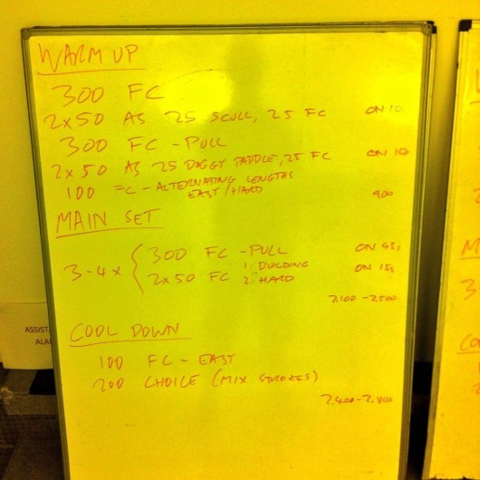 Tuesday, 13th January 2015 - Endurance Swim Session