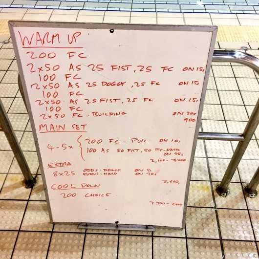 Wednesday, 11th February 2015 - Endurance Swim Session