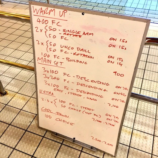 Wednesday, 18th February 2015 - Endurance Swim Session