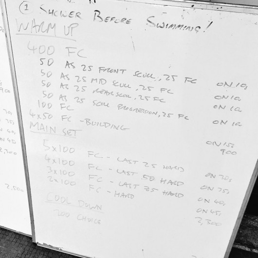 Tuesday, 31st March 2015 - Endurance Swim Session