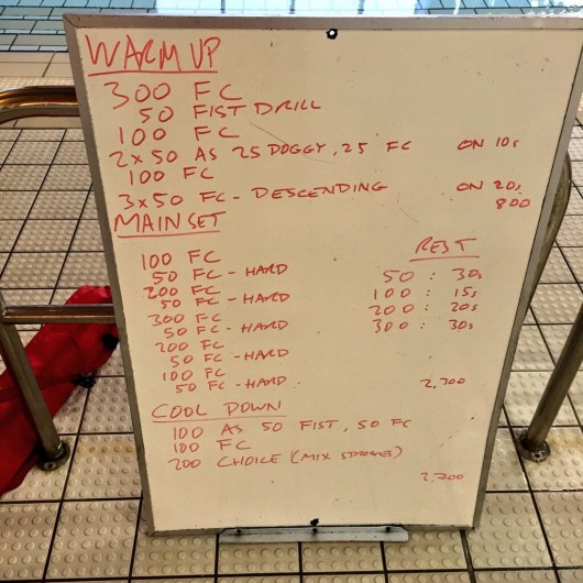 Wednesday, 8th April 2015 - Endurance Swim Session