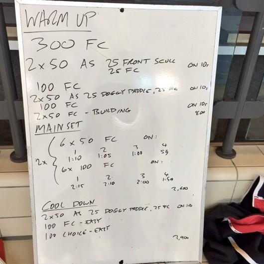 Wednesday, 17th June 2015 - Endurance Swim Session