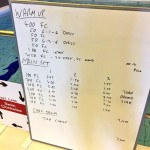 Tuesday, 23rd June 2015 - Endurance Swim Session