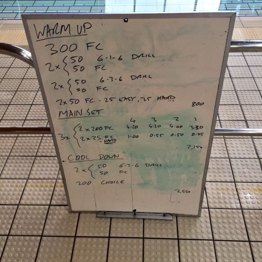 Wednesday, 8th July 2015 - Endurance Swim Session