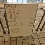 Wednesday, 29th July 2015 - Endurance Swim Session