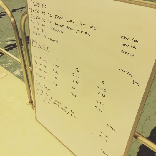 Tuesday, 4th August 2015 - Endurance Swim Session