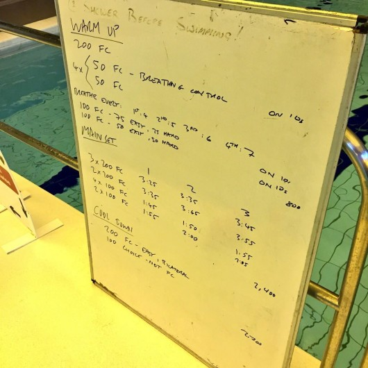 Tuesday, 11th August 2015 - Endurance Swim Session