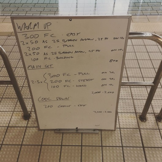 Wednesday, 12th August 2015 - Endurance Swim Session