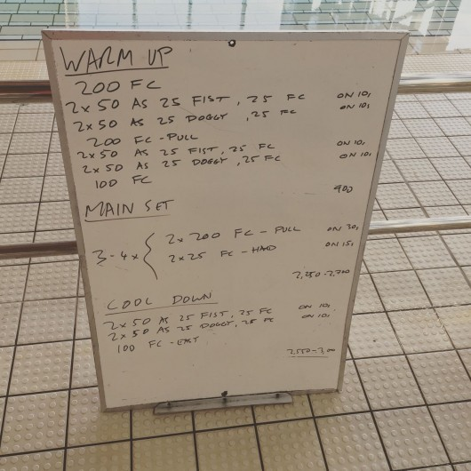 Wednesday, 19th August 2015 - Endurance Swim Session