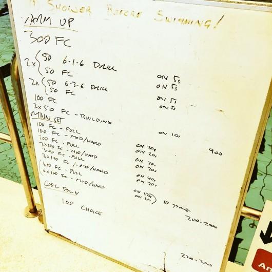 Tuesday, 25th August 2015 - Endurance Swim Session
