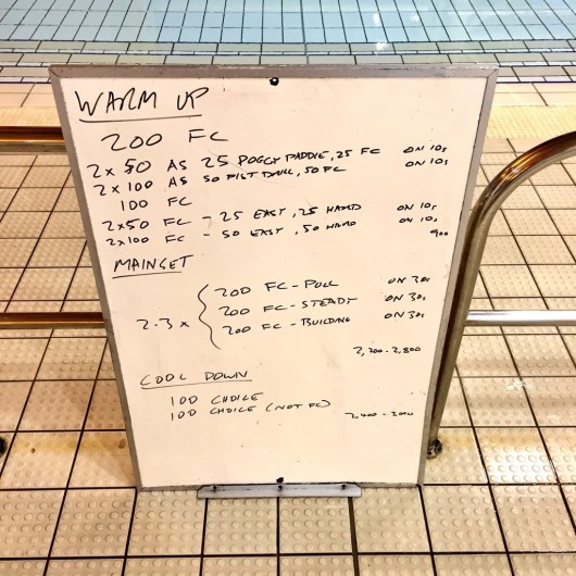 Wednesday, 7th October 2015 - Endurance Swim Session