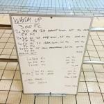 Wednesday, 18th November 2015 - Swim Session