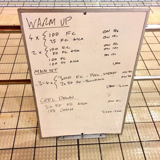 Wednesday, 16th December 2015 - Swim Session