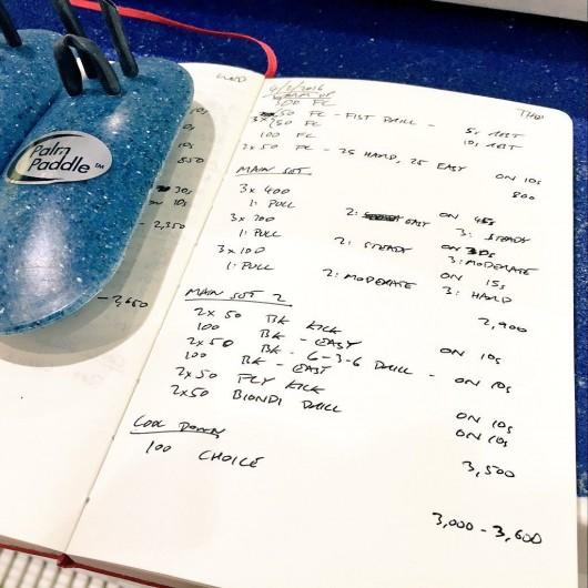 Thursday, 4th February 2016 - Swim Session