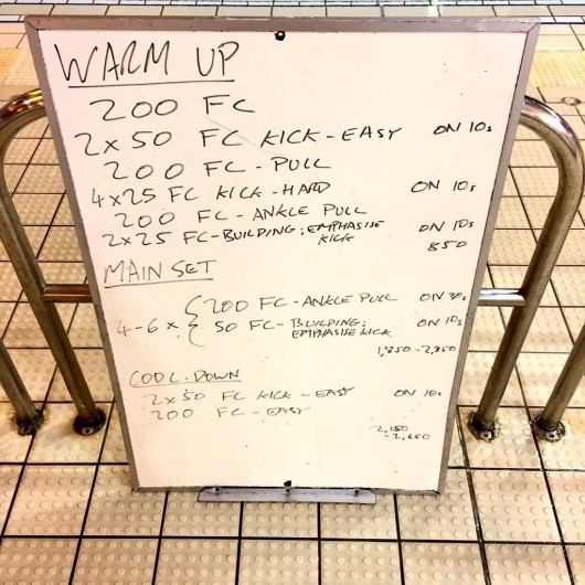 Wednesday, 3rd February 2016 - Swim Session