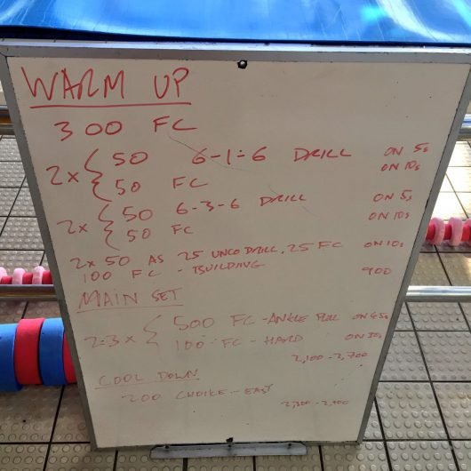 Wednesday, 20th April 2016 - Swim Session