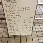 Wednesday, 8th June 2016 - Swim Session