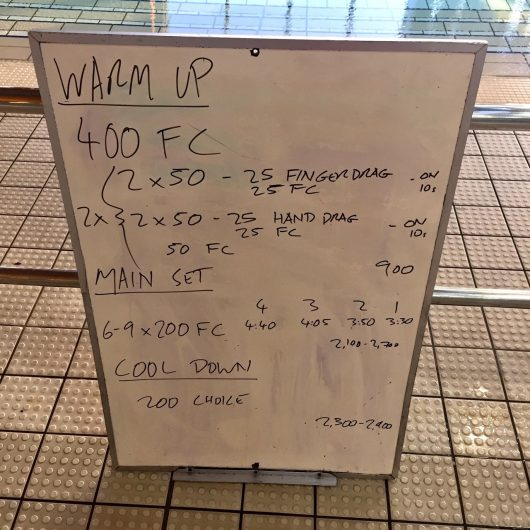 Wednesday, 17th August 2016 - Triathlon Swim Session