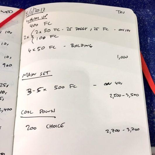 Thursday, 5th January 2017 - Triathlon Swim Session