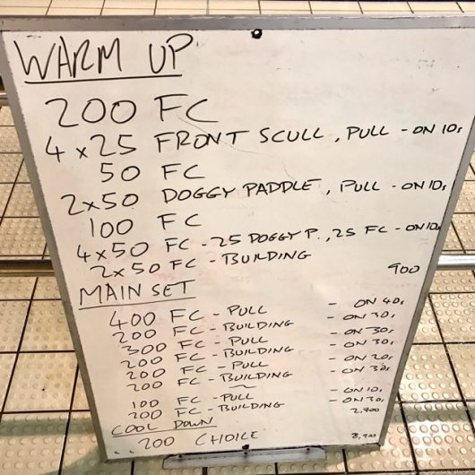 Wednesday, 15th February 2017 - Triathlon Swim Session