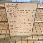 Wednesday, 15th March 2017 - Triathlon Swim Session