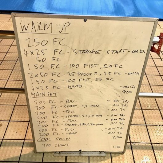 Wednesday, 22nd April 2017 - Triathlon Swim Session