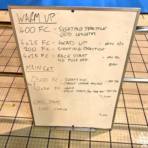 Wednesday, 29th March 2017 - Triathlon Swim Session