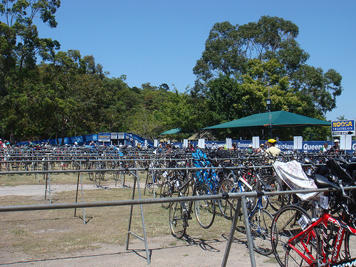 Noosa Transition filling up